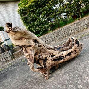 日本海の大型流木☆☆W17☆☆93㎝×42×37㎝☆アクアリウム・ディスプレイ・生け花・各種飼育材・オブジェ・看板・パルダリウム