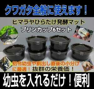 プリンカップ入り発酵マット6セット!クワガタの初令幼虫の小分けに便利!ひらたけ菌床を微粒子に!アミノ酸、トレハロース、栄養添加剤入