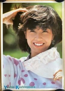 Kashiwa ... poster Philips