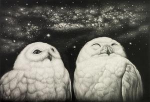 生田宏司「七夕」銅版画 メゾチント 額装 2羽のフクロウ 銀河 宇宙
