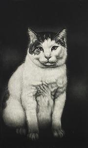 生田宏司「NORA」銅版画 メゾチント 額装 猫 のら