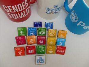 SDGsピンバッジ(11000円税込)(国連ブックショップ購入・送料無料)(17個アイコンピンバッチと1個のSDGsロゴピンバッチセット)再生素材 N98
