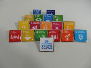 SDGsピンバッジ(国連ブックショップ購入・送料無料)(17個のアイコンピンバッチと1個のSDGsロゴのピンバッチセット)ラバークラスプ素材 N98