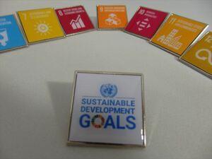SDGsピンバッジ(11000円税込)(17個のアイコンピンバッチと1個のSDGsロゴのピンバッチセット)(国連ブックショップ購入・送料無料)N98