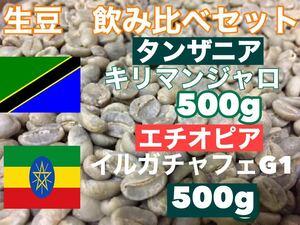 生豆 飲み比べセット キリマンジャロ 500g  イルガチェフェ500g