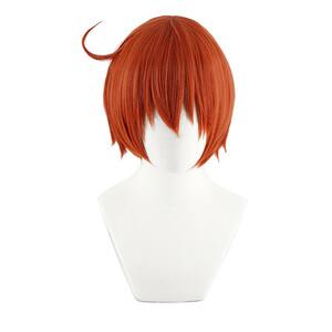 はたらく細胞 赤血球 風 ウィッグ 高温耐熱 カツラ 耐熱ウィッグ cosplay wig 仮装 変装用 コスプレ コスチ