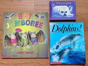 英語 絵本*幼児向け 動物の絵本 3冊セット