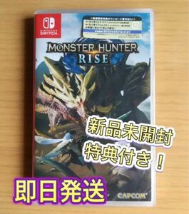 Nintendo Switch モンハンライズ
