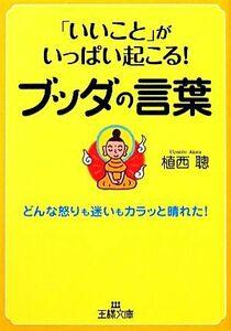 「いいこと」がいっぱい起こる!ブッダの言葉 王様文庫/植西聰【著】