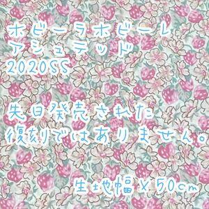 リバティ ホビーラホビーレ2020SS アシュテッド 生地幅×50cm☆70cmも可能です♪