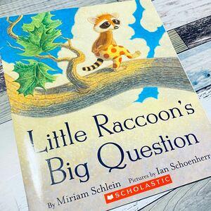 洋書 英語 絵本 Little Raccoon'sBig Question