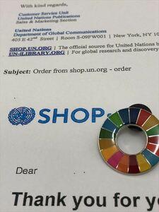 SDGs ピンバッジ 1個(990円税込)(国連ブックショップ購入・送料無料)(新品未使用)(保存袋付1枚き) UN11