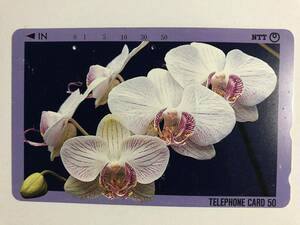 【使用済/両面に少々傷有】<テレホンカード> 花(3)(50度/穴2孔)