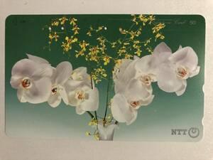 【使用済/両面に少々傷有】<テレホンカード> 花(5)(50度/穴3孔)
