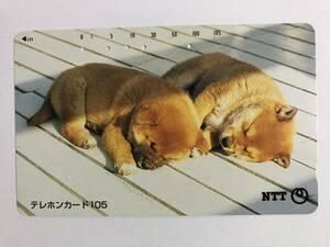 【使用済/両面に少々傷有】<テレホンカード>子犬2匹(105度/穴5孔)※動物・犬・子犬・風景・景色・仔犬