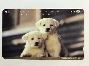 【使用済/両面に少々傷有】<テレホンカード>子犬2匹(105度/穴6孔) ※子犬・仔犬・犬・本のしおり・ブックマーク・風景・景色・アートの商品画像