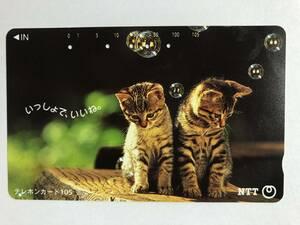 【使用済/両面に少々傷有】<テレホンカード>いっしょで、いいね。子猫2匹(105度/穴5孔)※風景・景色・子猫・猫・動物・小動物
