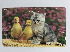 【使用済/両面に少々傷有】<テレホンカード>ひよこ と 子猫(105度/穴5孔)※猫・子猫・仔猫・動物・風景・景色の商品画像