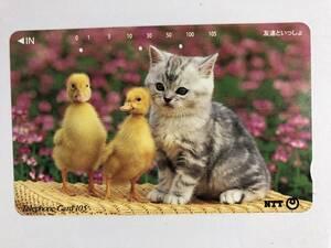 【使用済/両面に少々傷有】<テレホンカード>ヒヨコ と 子猫(105度/穴3孔)