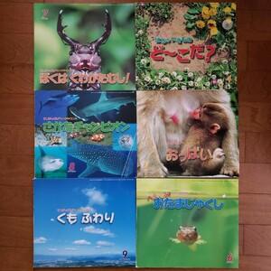 絵本 サンチャイルド ビッグサイエンス 2006.4~2007.3