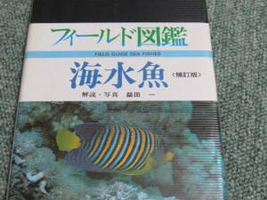 フィールド図鑑 海水魚 増補改訂版 益田一 東海大学出版会 定価2060円 貴重