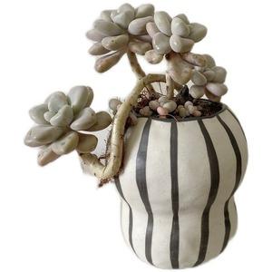 LDL781#ストライプ フラワーポット 花瓶 バルコニー 多肉植物 盆栽 ポット 植木鉢 インテリア おしゃれ サボテン.