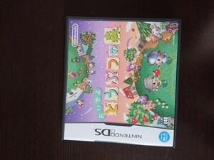 おいでよどうぶつの森DS ソフト