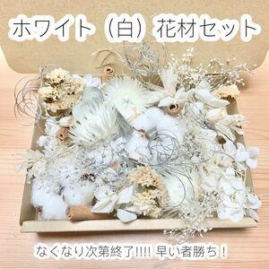 《SALE》花材SALE ホワイト 白 紫陽花 かすみ草 シルバーデージー ヘリクリサム ハーバリウム ワックス サシェ リース