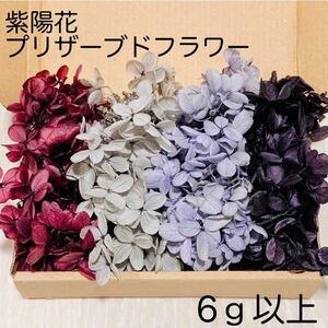 《SALE》紫陽花 アジサイ パープルセット プリザーブドフラワー ハーバリウム 花材 レジン