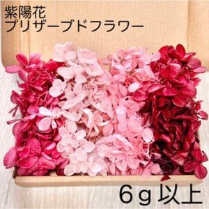 《SALE》紫陽花 アジサイ ピンクセット プリザーブドフラワー ハーバリウム 花材 レジン