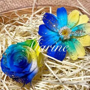 ジニア ローズ アソート ハーバリウム花材 サマーカラー