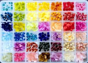 ●小さめ花材セットK ケース入り テラリウム インアリウム ハーバリウム印鑑 レジン封入 4●