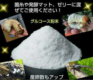 天然素材100% グルコース 約100g 小分けパック!クワガタ・カブトムシのエネルギー源はコレです!サイズアップ・産卵促進・長寿に