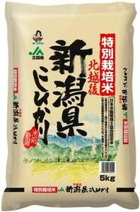 特別価格! 精米 令和産 5kg こしひかり 特別栽培米白米 新潟県北越後産 179