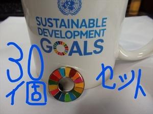 SDGs ピンバッジ 30個(送料無料)(22000円税込)(国連ブックショップ購入)(新品未使用)(小分袋30枚付)(ラバークラスプ付素材)UN82