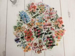 新品☆ お花の英字メッセージ フレークシール やわらかな透け感 マスキングテープ素材 お手紙 ラッピング メッセージカード作成などに