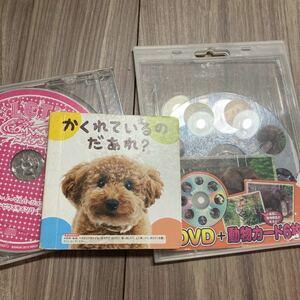 子供 DVD 絵本 カード付き セット 動物 ゴムダンス どつぶつ かくれているのだぁれ? キッズ