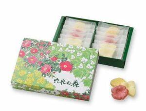 ☆【送料無料】六花亭 六花の森 12個入り チョコレート