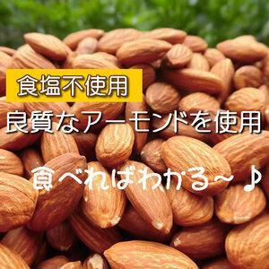 【CT】 ナッツ 素焼きアーモンド 45g 塩分不使用 無添加 無塩 塩不使用 アーモンド ロースト 食塩未使用 塩分未使用