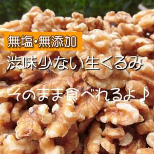 【CT】 ナッツ 剥きクルミ 100g 塩分不使用 無添加 砂糖不使用 無塩 塩不使用 生 くるみ クルミ
