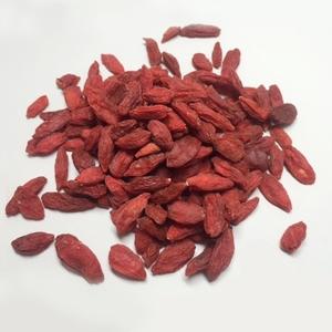 【Alishan】 有機JAS くこの実 60g くこ クコ 枸杞 ドライフルーツ アリサン オーガニック ゴジベリー 無添加 有機食品