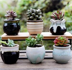 【送料無料】(6個セット)レトロシンプル 和風 セラミック 多肉植物 サボテン ミニ観葉 フラワーポット 植木鉢