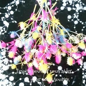 加工花材* レインボー プリザーブドフラワー 花材