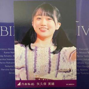 乃木坂46 8th YEAR BIRTHDAY LIVE カード 矢久保美緒