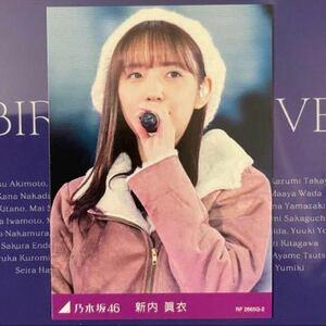 乃木坂46 8th YEAR BIRTHDAY LIVE カード 新内眞衣