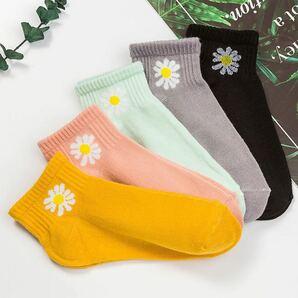 最新デザイン おしゃれで可愛い靴下 5足