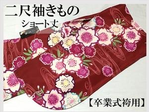新品 二尺袖 卒業 小振袖 袴用 ショート丈 洗えるきもの 11192-7