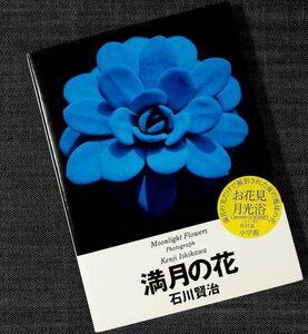 月下の花 写真集『満月の花』|石川賢治 夜に花 花びら 月の光 月あかり 月光浴 幻想的 ミステリアス 自然 植物#