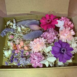ピンク ムラサキ アジサイ スターフラワー カスミ プリザーブドフラワー ハーバリウム花材