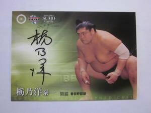 2013BBM大相撲カードレジェンドGLORY 栃乃洋 関脇 春日野部屋 90枚限定直筆サインカード